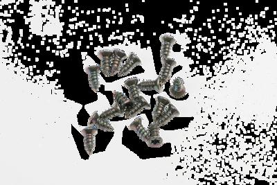 Slika za Alusign TORX vijci